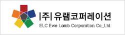 유램코퍼레이션_200318